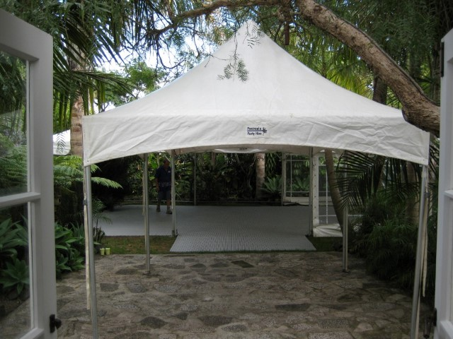 PPH-springtop_tropical